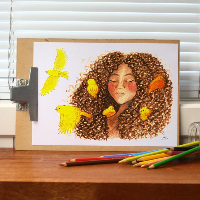 As Ilustrações de Luiza Normey
